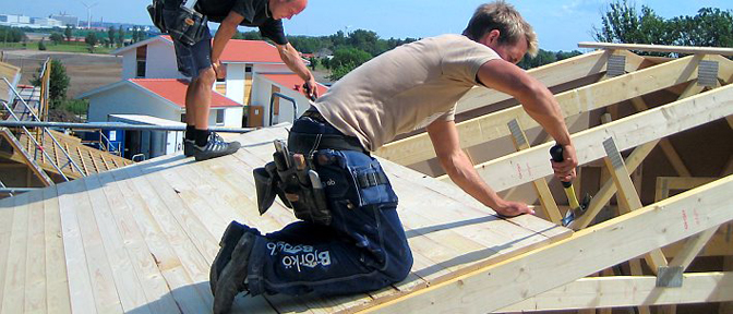 Tongue Groove Roofing Panel